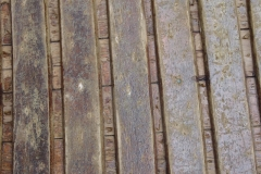 Chestnut Close Ribs