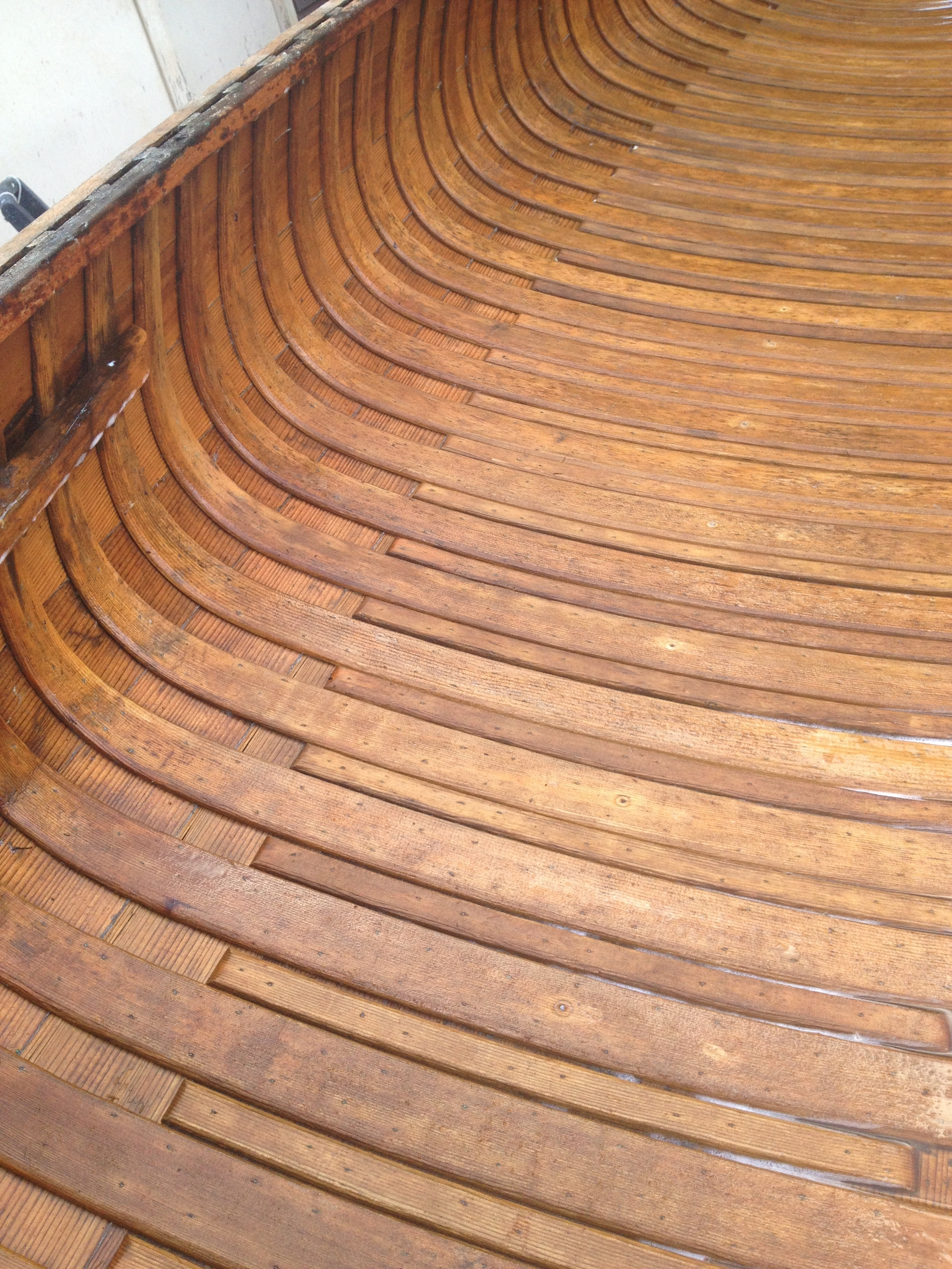 Red cedar planking with sitka spruce ribs and half ribs